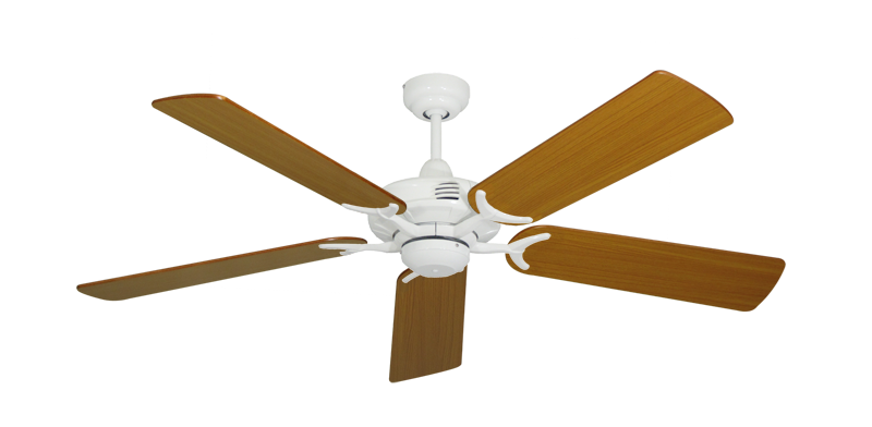 "Picture of Coastal Air Pure White with 52"" Teak Blades"