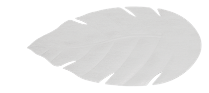 "Picture of 52"" Venetian Pure White Blades (P Series)"